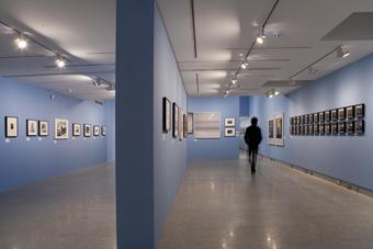 Sala de exposición Observados