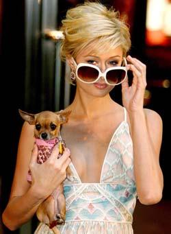Paris Hilton posando con un perro