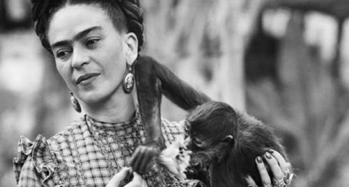 Frida Kahlo, pintora mejicana-Fuente: animalgourmet.com