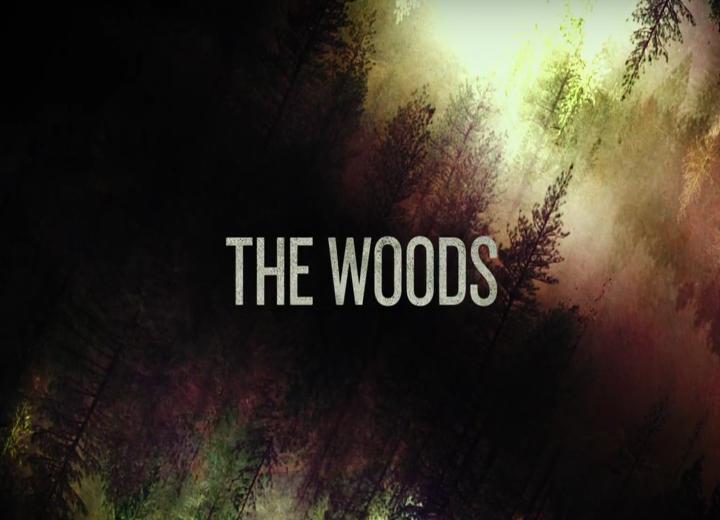 Imagen promocional de la cinta 'The Woods'