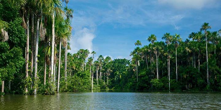 Lago Sandoval (Foto: costamar.com)