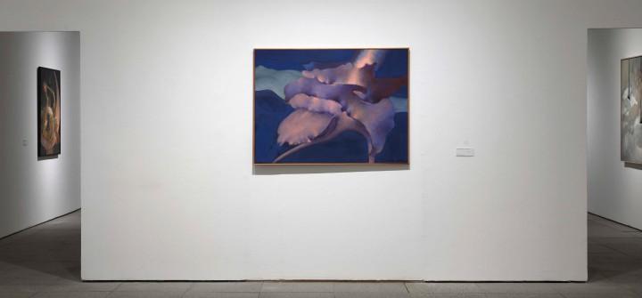 """Vista de sala de la exposición """"Dorothea Tanning. Detrás de la puerta, invisible, otra puerta""""."""