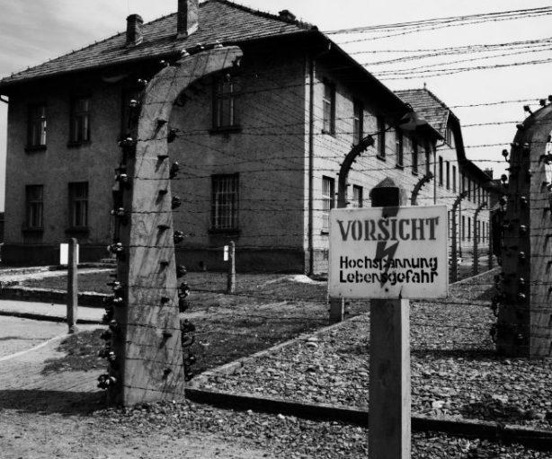 Campo de concentración de Auschwitz, alambrada