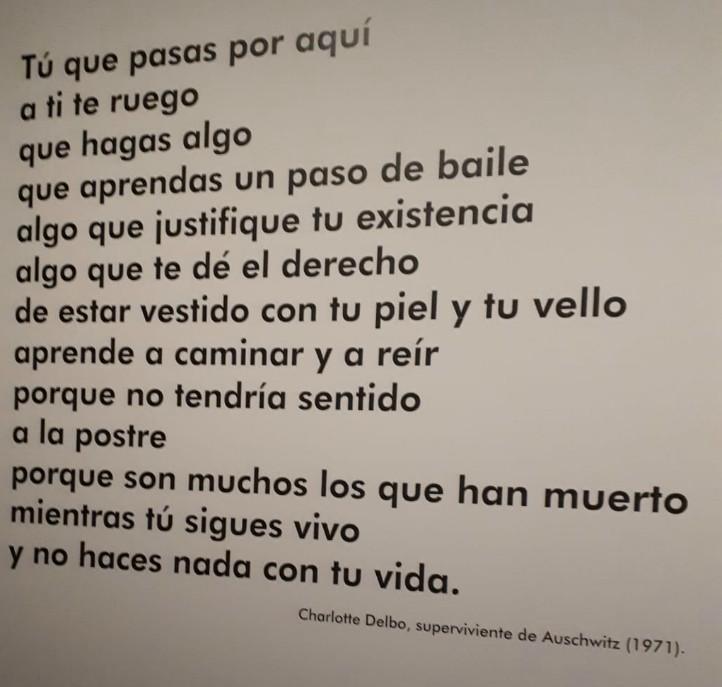 Una de las últimas frases de la exposición, dicha por una de las supervivientes de Auschwitz.