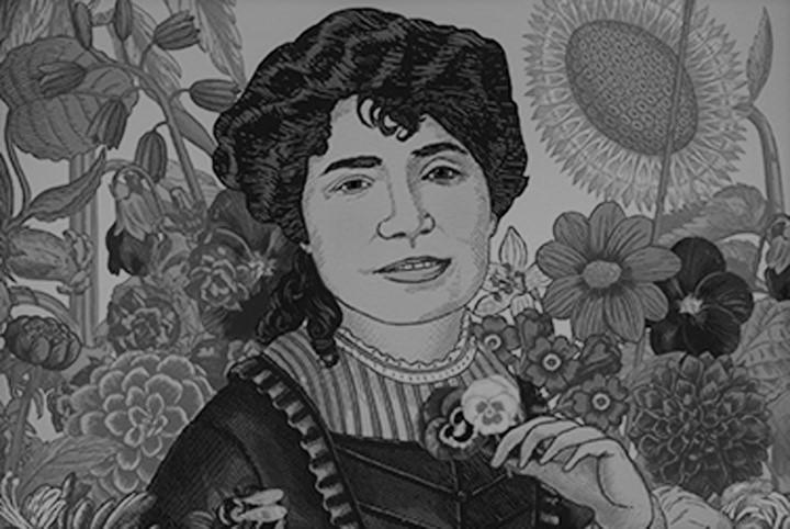 Dibujo de Rosalía de Castro, poeta gallega.
