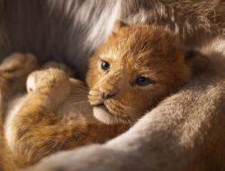 el-rey-leon-foto-portada