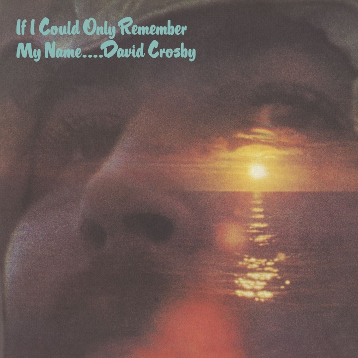 If I Could Only Remember David Crosby My Name